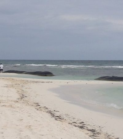 Detecta Profepa irregularidades en Punta Beté, Solidaridad