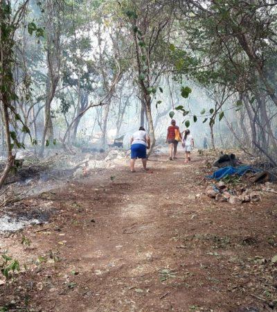 Asentamientos irregulares ponen en riesgo limpieza de ríos subterráneos en la zona de Tulum