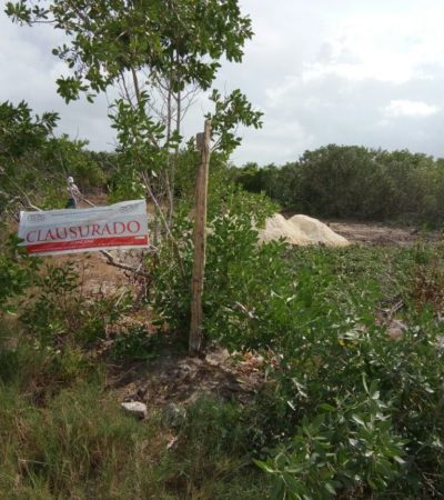 Clausura Profepa dos obras ilegales en Holbox