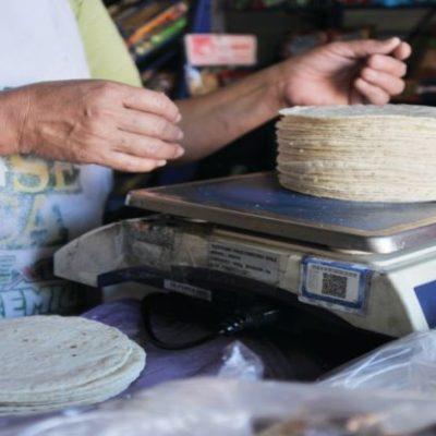 SUBE LA TORTILLA: Con el alza de algunos insumos básicos que trajo el Nuevo Año, empiezan a aumentar costos de productos