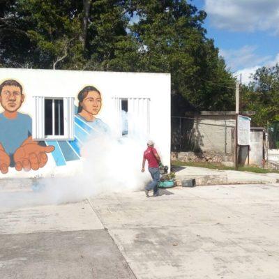 Realiza ayuntamiento fumigación en delegaciones y escuelas de zona maya