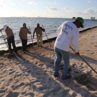 Mantienen limpieza permanente de playas en Cancún