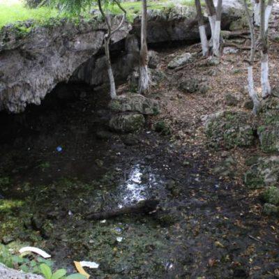 Contaminan el manto freático en la zona maya