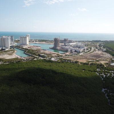 DEVASTACIÓN DE MANGLAR EN PUERTO CANCÚN: Denuncian nuevo ecocidio en torno a exclusivo complejo residencial