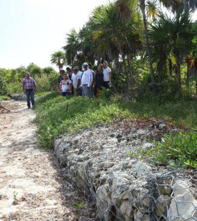Avanza reparación del camino a Punta Allen