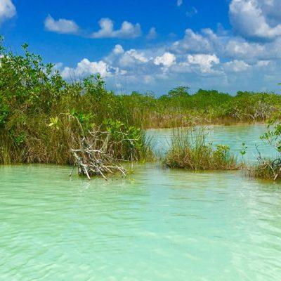 PREOCUPACIÓN POR LA LAGUNA DE BACALAR: Agroquímicos y falta de infraestructura para desechos 'enferman' el frágil sistema hidrológico en el sur de QR, advierten