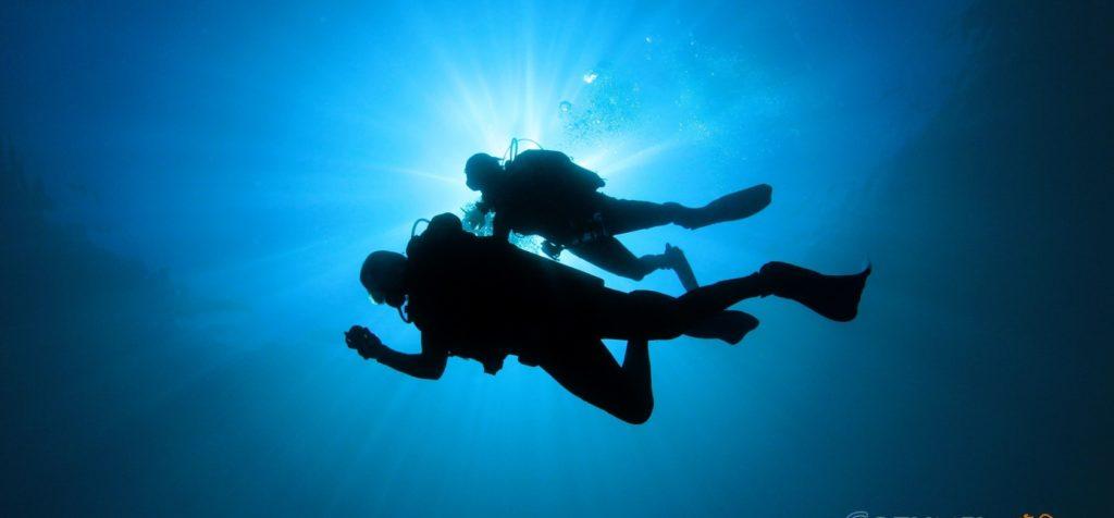 'Warning' de EU sí afectó al buceo de Cozumel: ANOAT