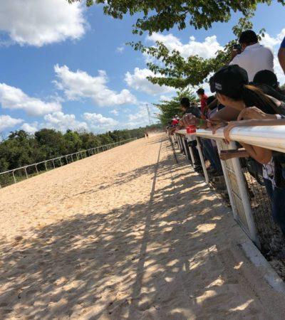 Verifica Fiscalización presunta carrera de caballos clandestina en Bonfil; organizadores acredistaron permisos
