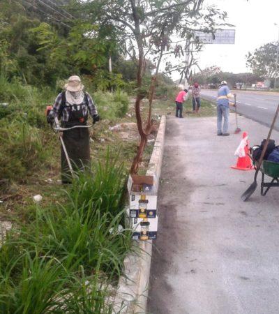 Limpian parques, puentes y vialidades en Solidaridad