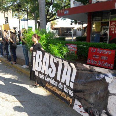 Protestan contra corrida de toros en Mérida