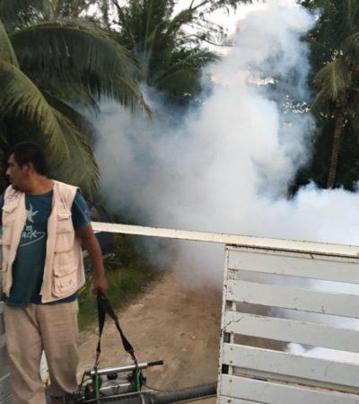 Ayuntamiento de Tulum combate enfermedades con fumigaciones
