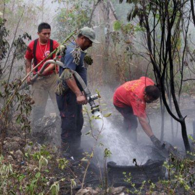 Dos de los primeros incendios de la temporada ya están bajo control