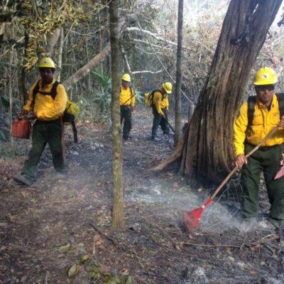 Incendio arrasa sabana cerca de Laguna Ocom, en la Zona Maya