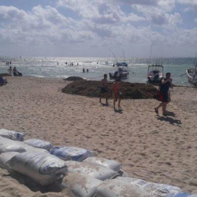 """Pescadores y náuticos retiran espigones y recuperan 18 metros de playa en 'El Recodo"""""""