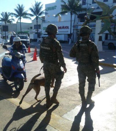 MANTIENEN VIGILANCIA EN MUELLES DE QR: Con tranquilidad fluye cruce a Cozumel
