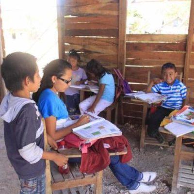 Todos los niños de QR van a la escuela, según Conafe