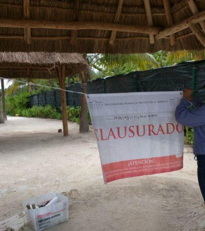 Clausura Profepa restaurante 'Lol-Ha Akumal' por carecer de autorización en materia de Impacto Ambiental