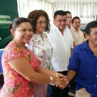 Renuncia ex presidenta del PRI en Lázaro Cárdenas
