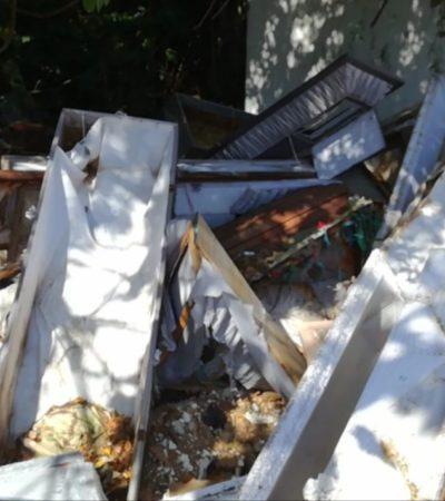 Sacan ataúdes de sus tumbas y los exhiben al aire libre en cementerio municipal de Cozumel