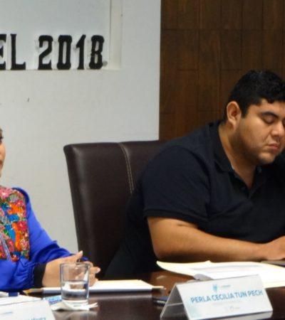 Turna Derechos Humanos al Congreso recomendación por la matanza de perros en Cozumel
