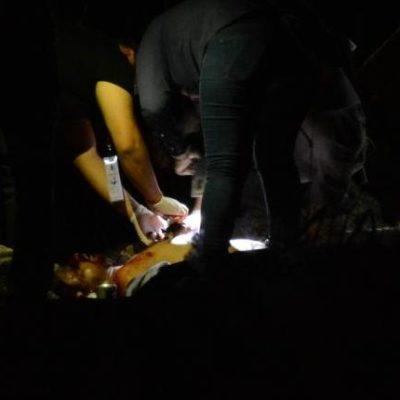 DOMINGO VIOLENTO EN CANCÚN: Dos asesinatos y tres baleados en diferentes incidentes en la ciudad