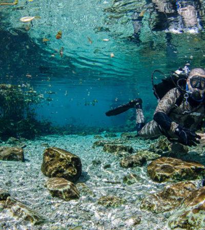 Hallan caverna con vestigios prehispánicos en el cenote Xlacah de la Zona Arqueológica de Dzibilchaltún