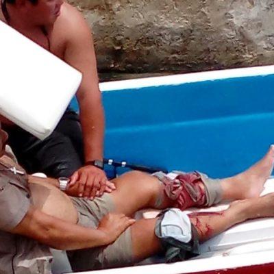 Cocodrilo muerde a bañista en Cozumel