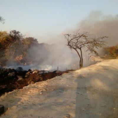 Las llamas del incendio en Rancho Viejo ya fueron apagadas