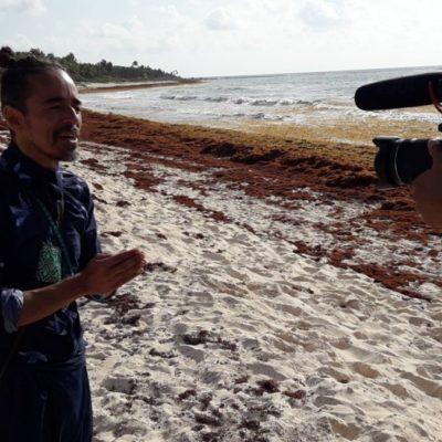 Inicia la defensa del santuario de tortugas Xcacel-Xcacelito para frenar el proyecto 'La Calma Eco Resort'