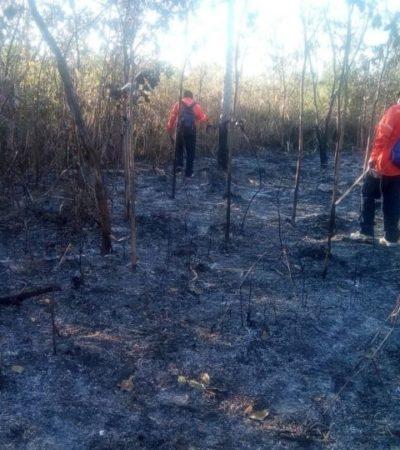 Nueve incendios fueron sofocados oportunamente por Protección Civil de Puerto Morelos, pero invitan a extremar precauciones