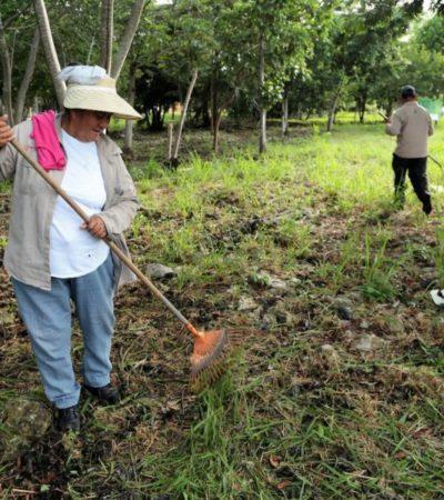 Atienden recomendaciones de la alerta de violencia de género en Cancún
