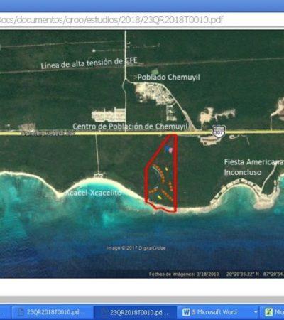 La Calma Eco Resort Luxury pretende aterrizar en Xcacel-Xcacelito con una inversión de más de 21 mdd; ecologistas defenderán santuario de tortugas marinas