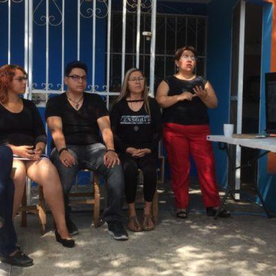 CASA DEL ÁRBOL: Bajo la fronda de redes profesionales, trueque de saberes y talleres artísticos