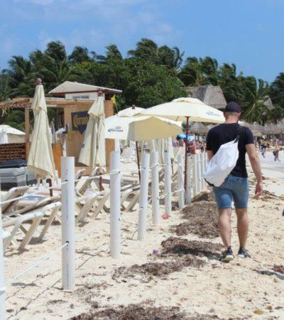 Retira Mamita's los postes de criticada concesión en una de las playas más concurridas de la Riviera Maya