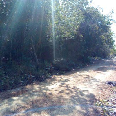 Hallan cadáver de hombre presuntamente asesinado en un cenote seco al sur de Playa del Carmen