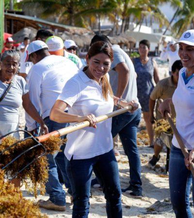 RETIRAN MÁS DE 130 TONELADAS DE SARGAZO: Limpian playas gobierno de Solidaridad y voluntarios