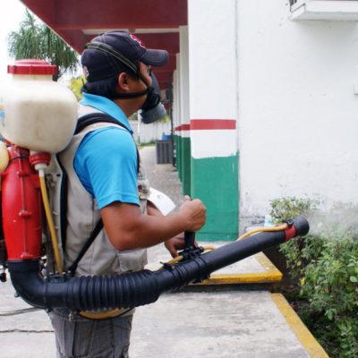 Realizan acciones para evitar criaderos de mosquitos que contagian paludismo en Puerto Morelos