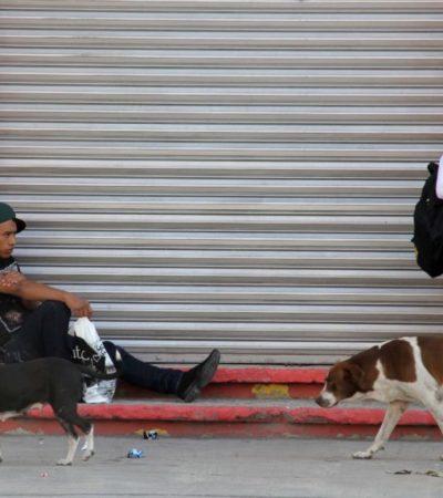 Urge recuperar zona centro de Cancún: AMPI