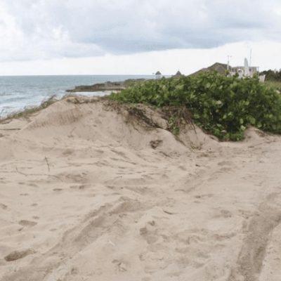"""""""Marisol Vanegas está desinformada; es crimen ambiental, extraer arena en Punta Norte"""", responden ambientalistas a la secretaria de Turismo del QR"""