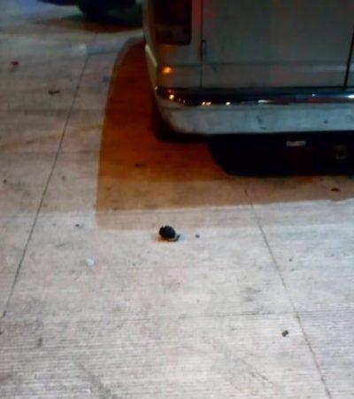 Dejan una granada cerca del Cereso de Cancún