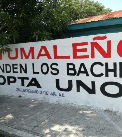 """""""Chetumaleño, ¿te ofenden los baches? adopta uno"""": ciudadanos pintan bardas para exigir mejoras en la capital y ser escuchados por el gobierno"""