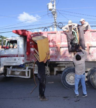 Más de 25 toneladas de cacharros se han retirado este año en Solidaridad