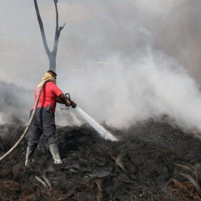 ADVIERTEN RIESGOS DE LA TEMPORADA DE CALOR: Cómo prevenir los incendios forestales