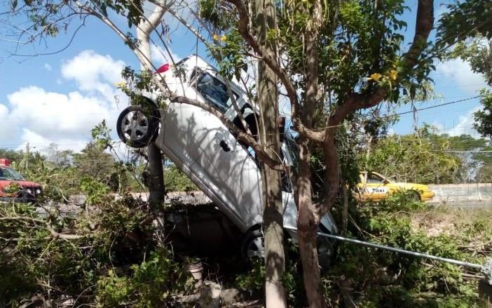 Auto conducido por ebrio se trepa a árbol y a punto estuvo de meterse en una casa; no hay heridos ni detenidos; conductor se fugó