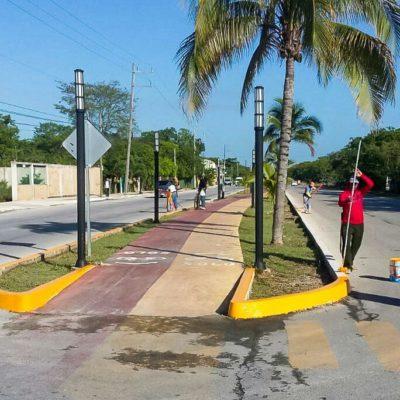 Mejora Solidaridad más de 30 kilómetros de guarniciones en abril