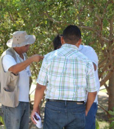 Autoridades de Solidaridad siguen sin aceptar responsabilidad en la instalación irregular de baños en Punta Esmeralda