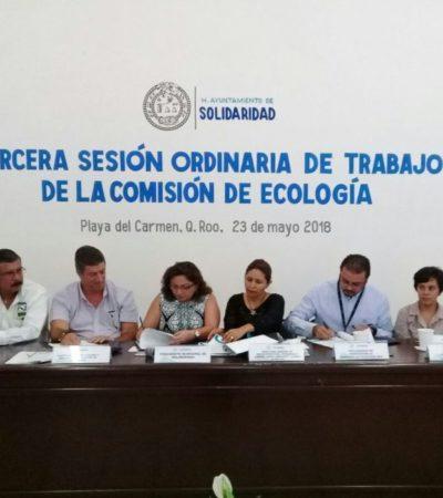 Infractores de la Ley de Residuos podrán pagar sus multas en especie en Solidaridad
