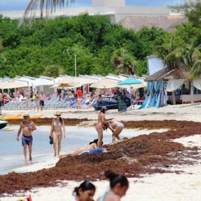 Se reactivan actividades turísticas en Playa del Carmen con la apertura de puerto