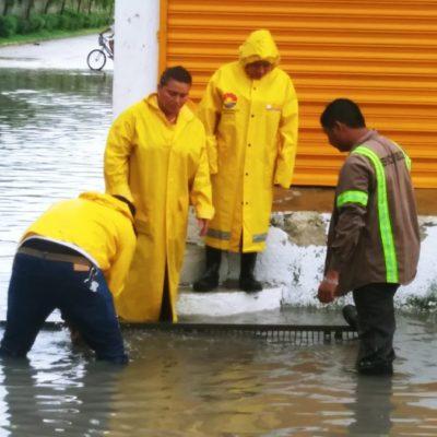 Cuadrillas de servicios públicos de Puerto Morelos limpian pozos y alcantarillado para aligerar efectos de lluvias