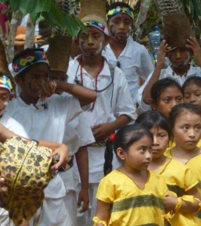 Denuncian a Fundación Melipona Maya de 'saquear' al pueblo maya de su Xunáan Kaab